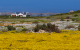 Farmhouse in Namaqua Land
