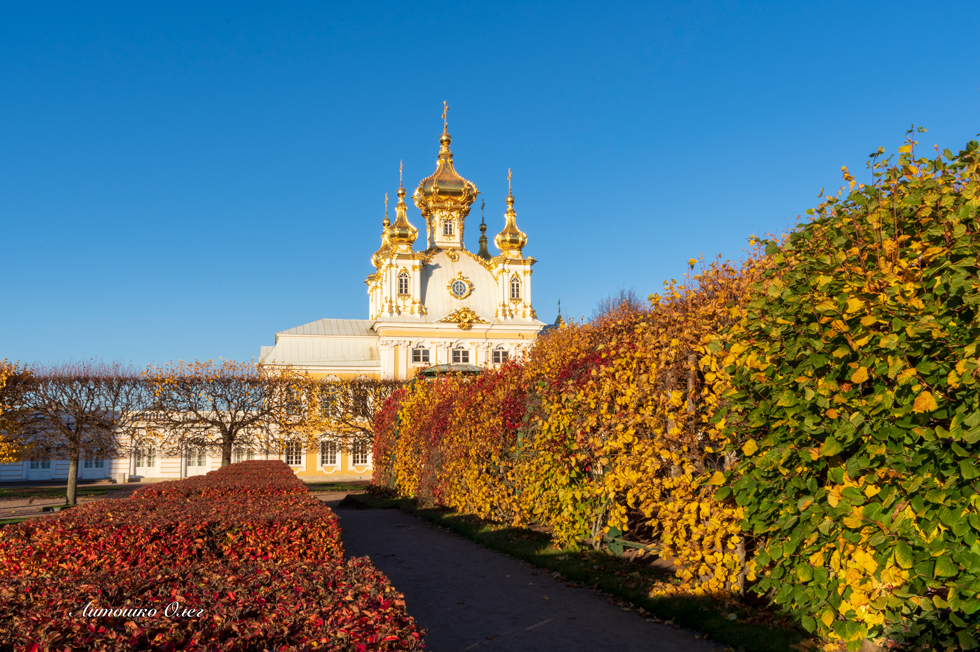 The Peterhof in autumn. Upper park.