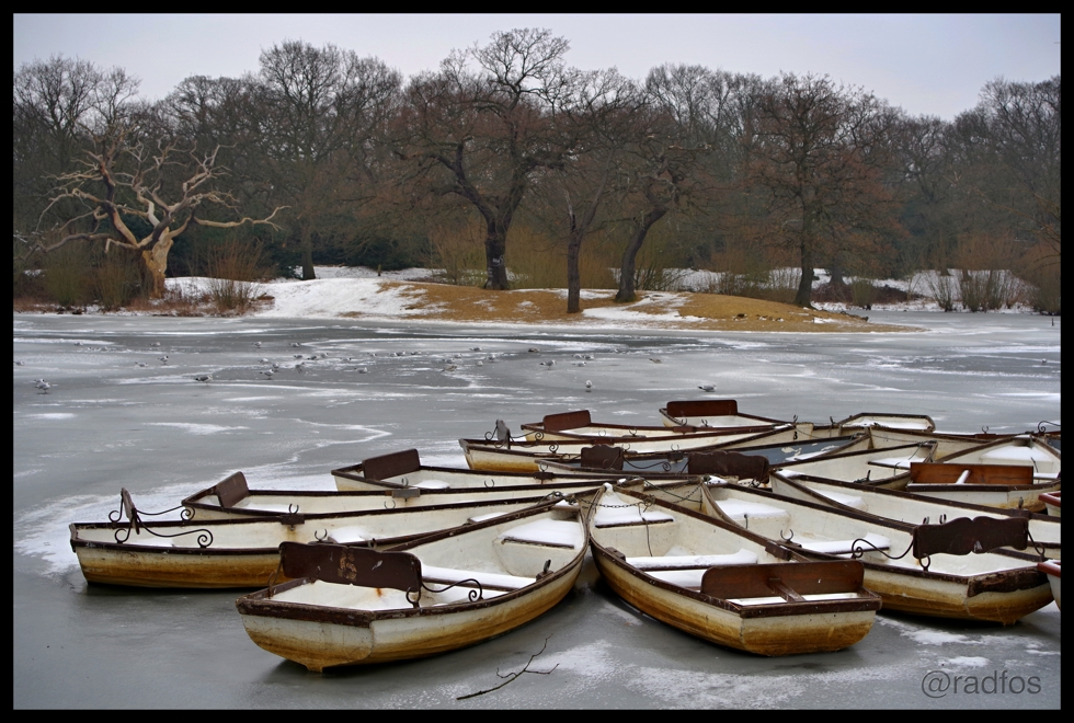 Boats - Hollow Pond