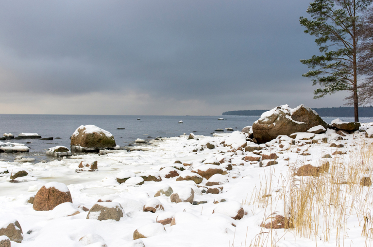 The Gulf of Finland.
