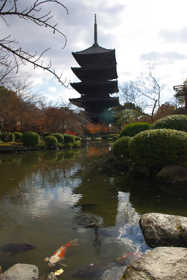 temple and carps