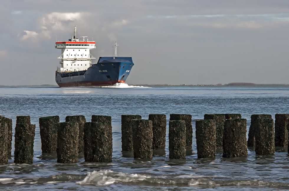 Container ship 'Wes Janine'